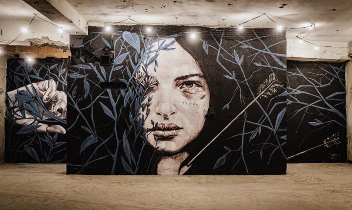 Arte urbana em 18 Murais